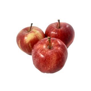 """Apfel """"Gala"""""""