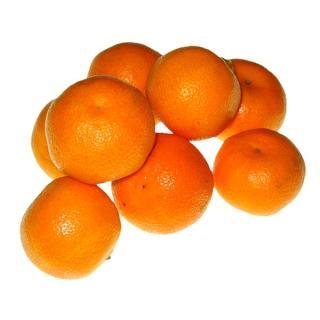 """Clementine """" Nova """""""