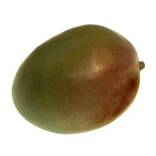 "Mango "" Kent """