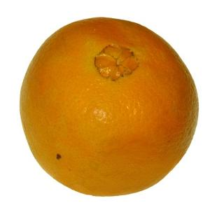 """Orange - Saftorange """" Navelina """""""